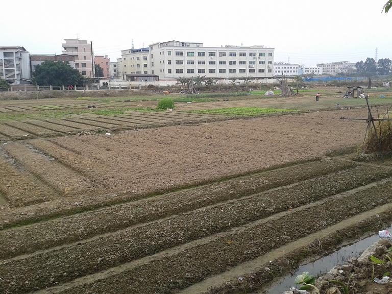 惠州地皮ope手机客户端@长安42亩商住用地转让