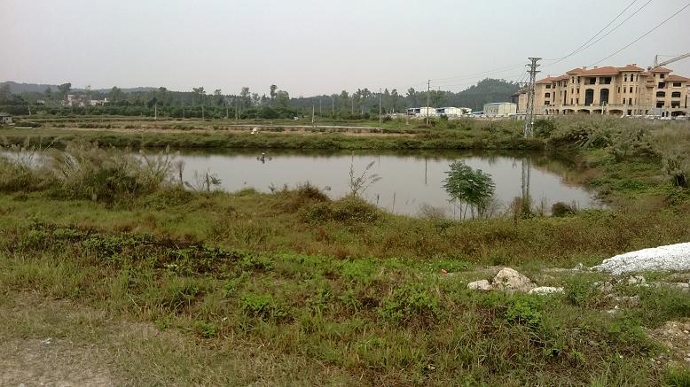 惠州地皮ope手机客户端@长安汽车站附近40亩土地ope手机客户端