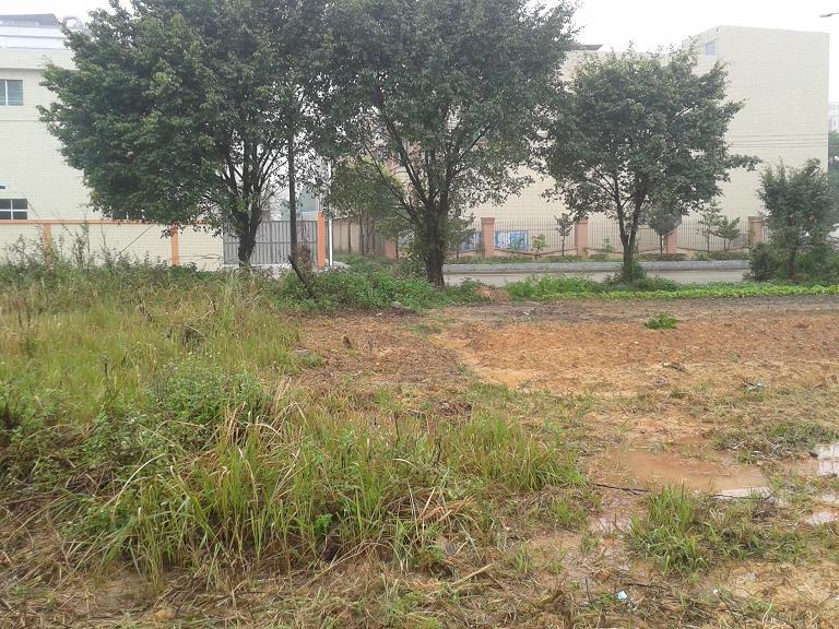 惠州地皮ope手机客户端@横沥镇40亩工业地皮转让