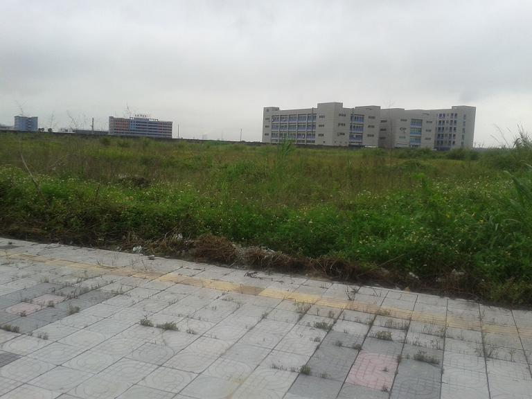 东莞地皮出租高埗77亩工业地出租
