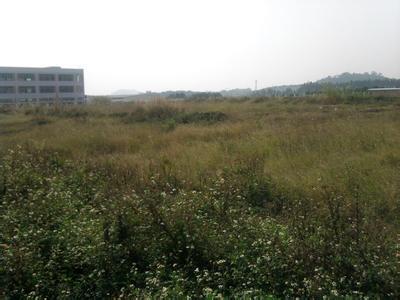 惠州地皮ope手机客户端@24亩高埗裕园工业区土地转让ope手机客户端