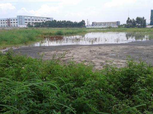 惠州地皮ope手机客户端@冼沙工业区3000平方米土地出租