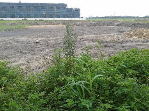 东莞地皮出租2000平方米路边空地出租