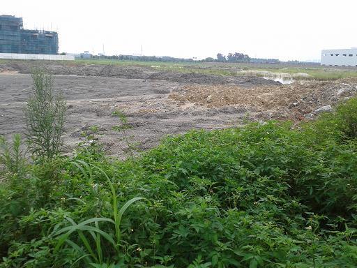 200亩工业土地出租--东莞土地网