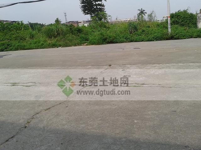38亩高埗工业地买卖ope手机客户端@东莞土地网