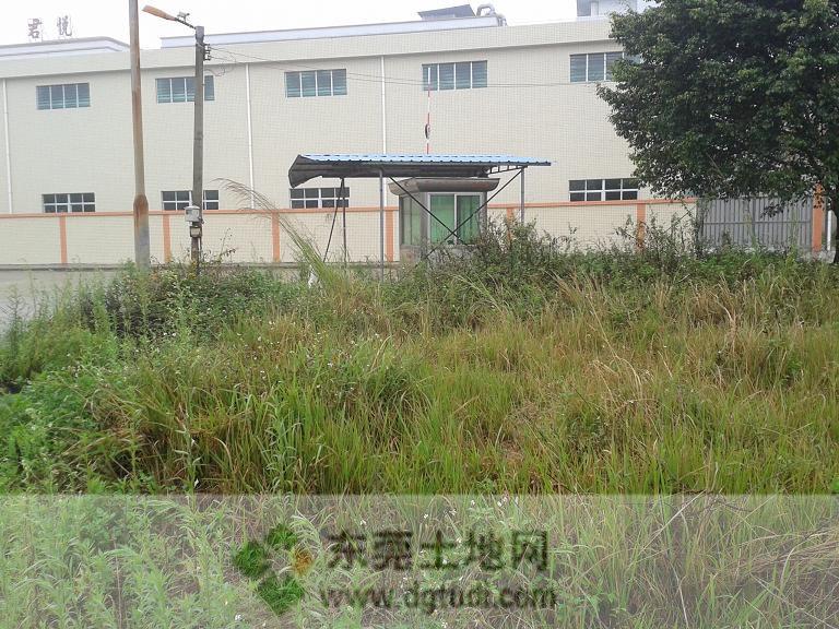 东莞东部工业园茶山园区300亩工业用地ope手机客户端