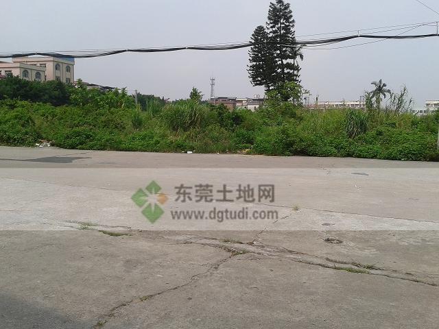 横沥镇32亩新城工业土地ope手机客户端@东莞土地网