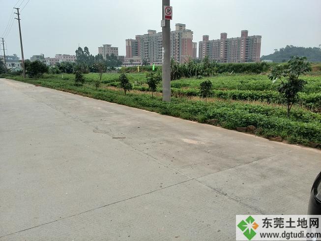 中堂55亩工业土地ope手机客户端