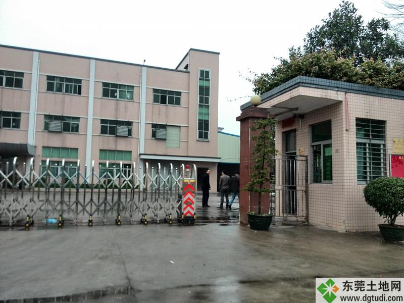 ope电竞官网石碣镇独院ope体育滚球ope手机客户端3000平方米