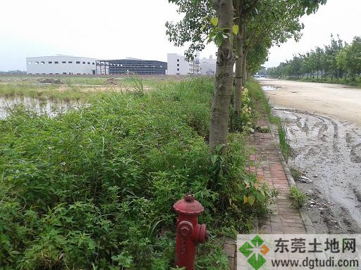 东莞工业地ope手机客户端-东坑33亩土地转让