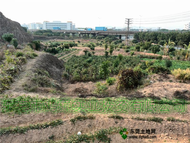东莞东坑90亩工业用地转让