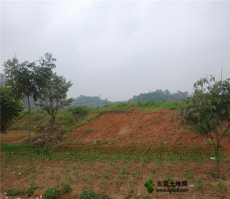 长安工业地块转让土地面积65亩