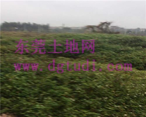 东莞土地ope手机客户端@高埗20亩工业用地ope手机客户端