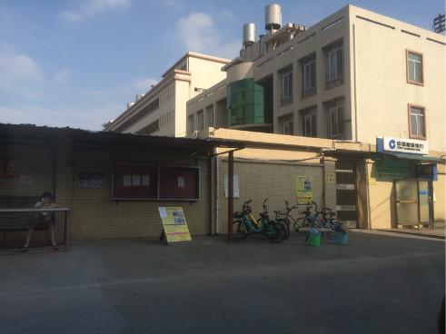 大朗镇独院竞博电竞下载竞博jbo下载安卓42亩
