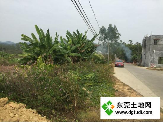 惠州25万㎡国有红本土地ope手机客户端